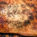 Pięknie przypieczona skórka na kaczce z cynamonem