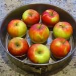 Wybieramy odpowiedniej wielkości jabłka do tortu jabłkowego