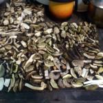 Grzyby suszą się na piecu