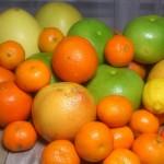 Cytrusy - pomarańcze, cytryny, mandarynki, grapefruity, pomelo...