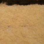 Lazania z sosem bolońskim przed pieczeniem